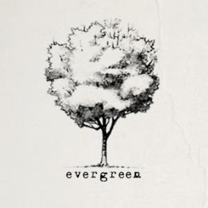 Evergreen videografi