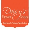 Daisy's Flower Shop