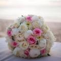 Bahamas Wedding Planner by Paulette Davis